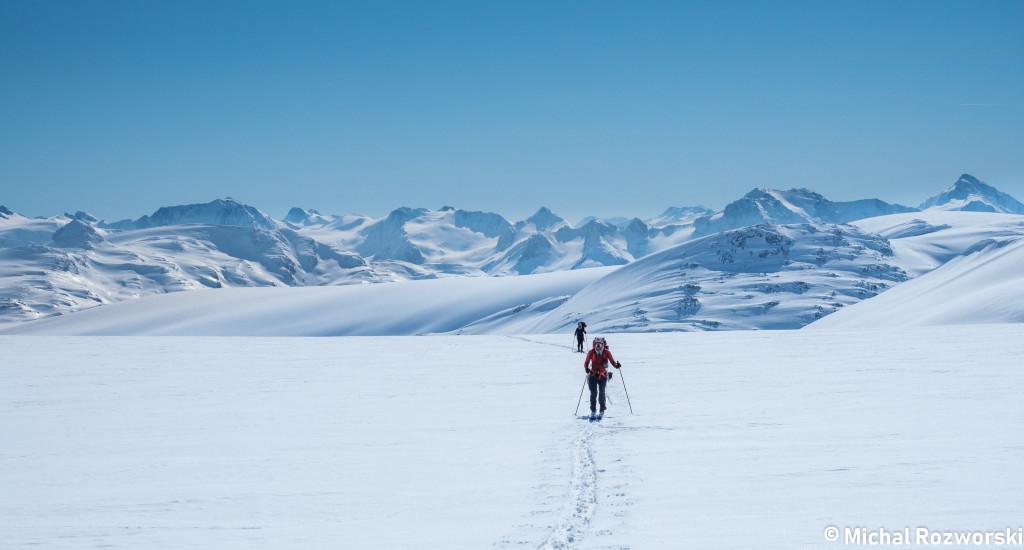 On the vast expanse of the Bridge Glacier. Photo: Michal Rosworski