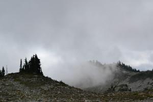 """""""the ridge"""""""