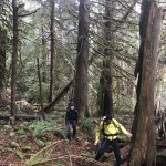 Into to Bushwhacking