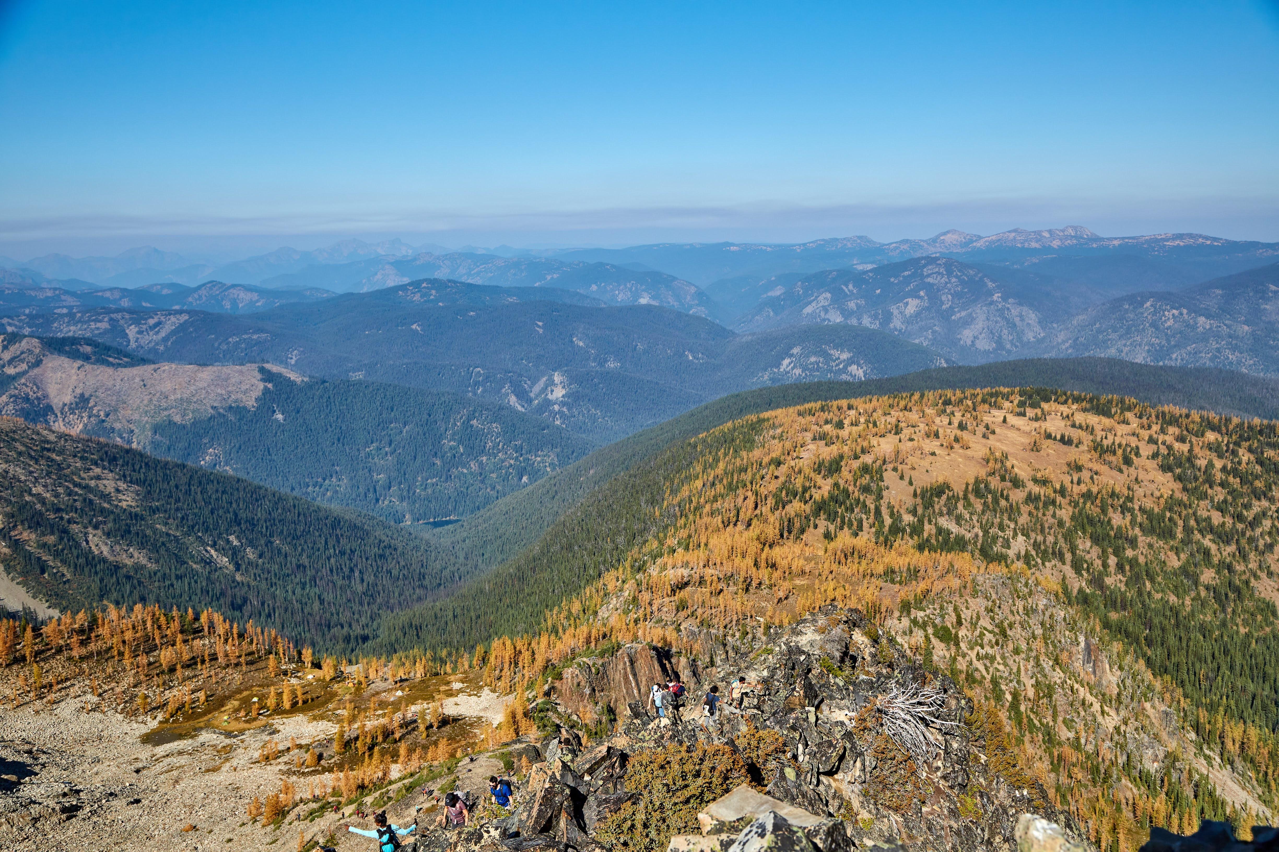 The larches from the ridge. Photo by Radek Kloska.