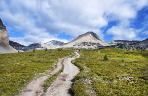 The easy trail to Lake Helen.