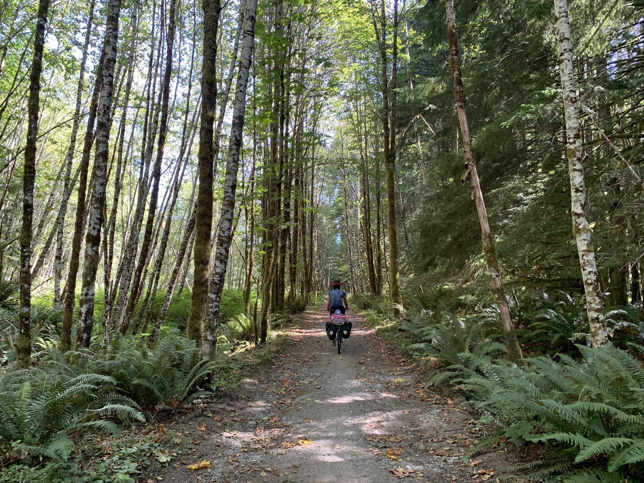 Cowichan Trans Canada trail