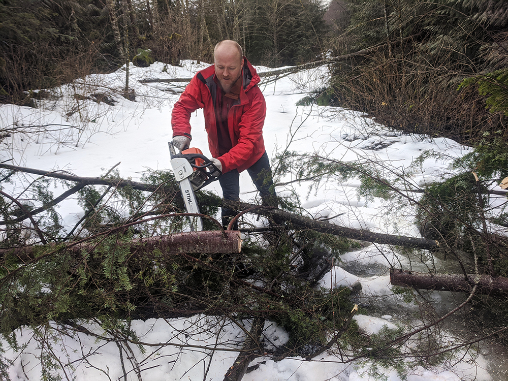 Cutting through one of the many patches of downed trees on the road.