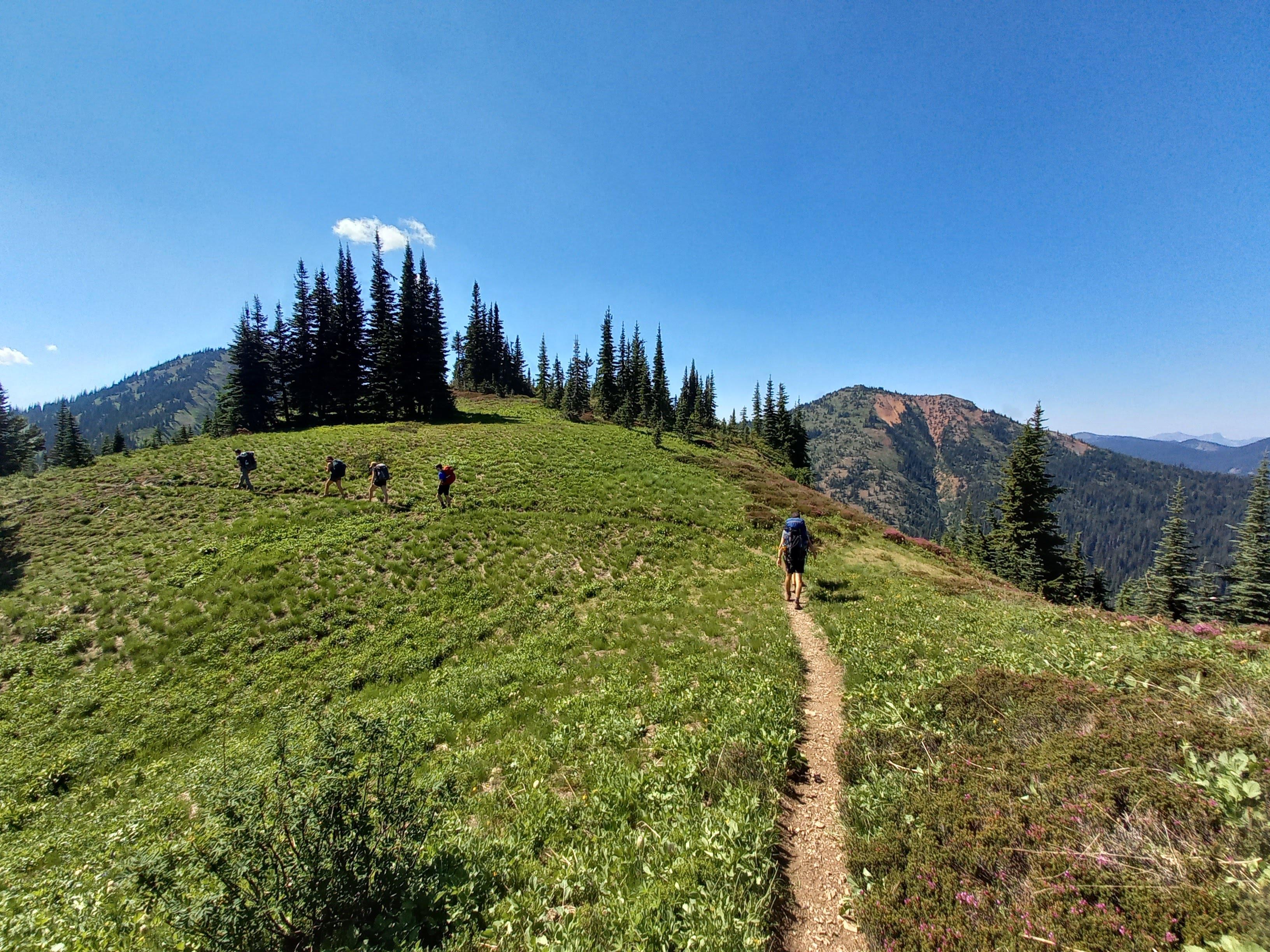 Typical alpine terrain on the Skyline Trail